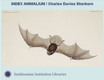 icon: Index Animalium / Charles Davies Sherbon